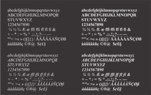 Lámina corrección tipográfica. INSEDIC